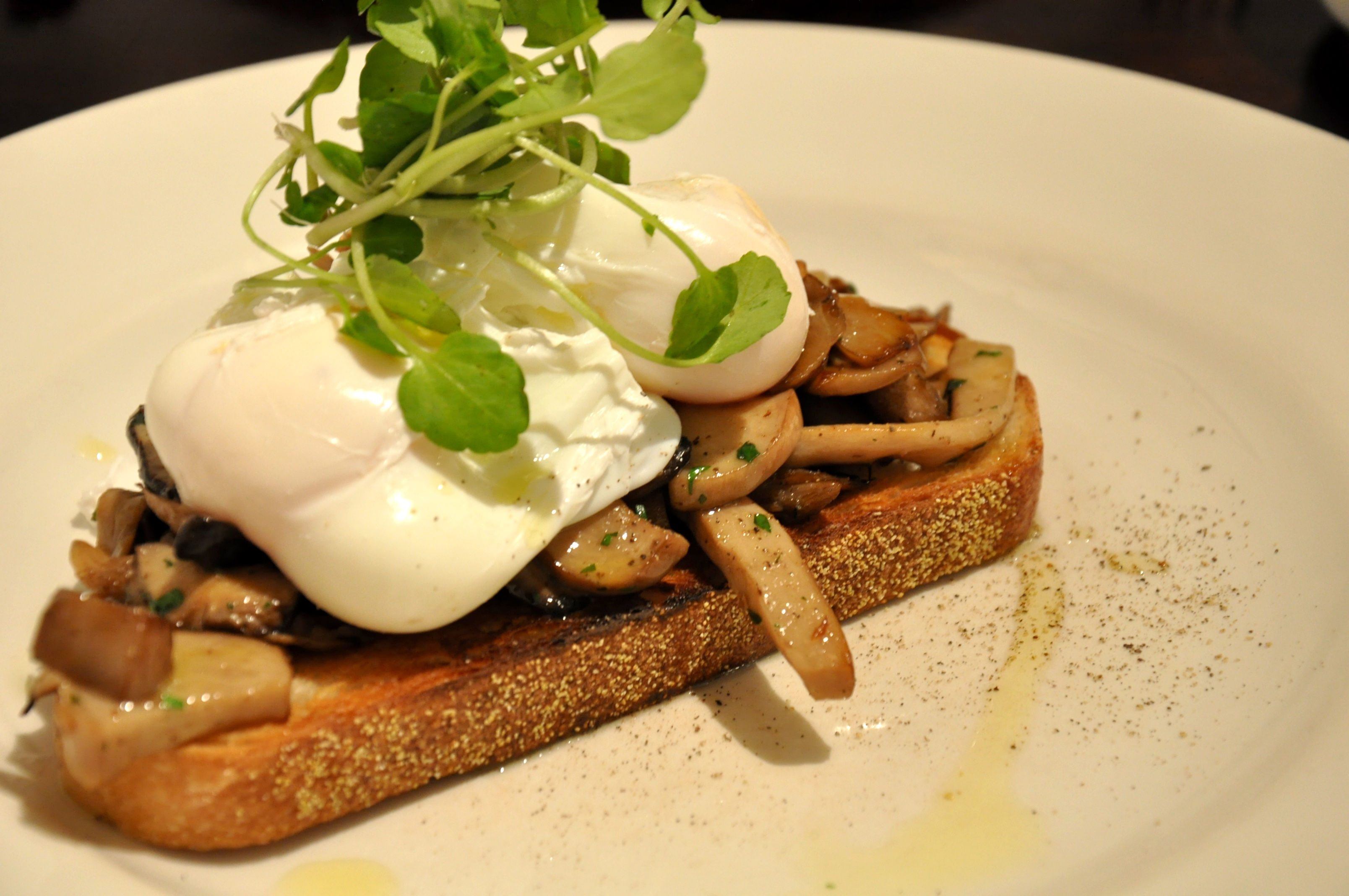mushrooms on toast brunch